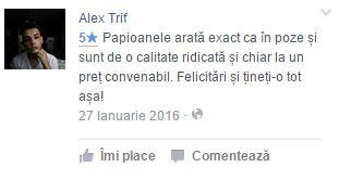 testimoniale alex trif
